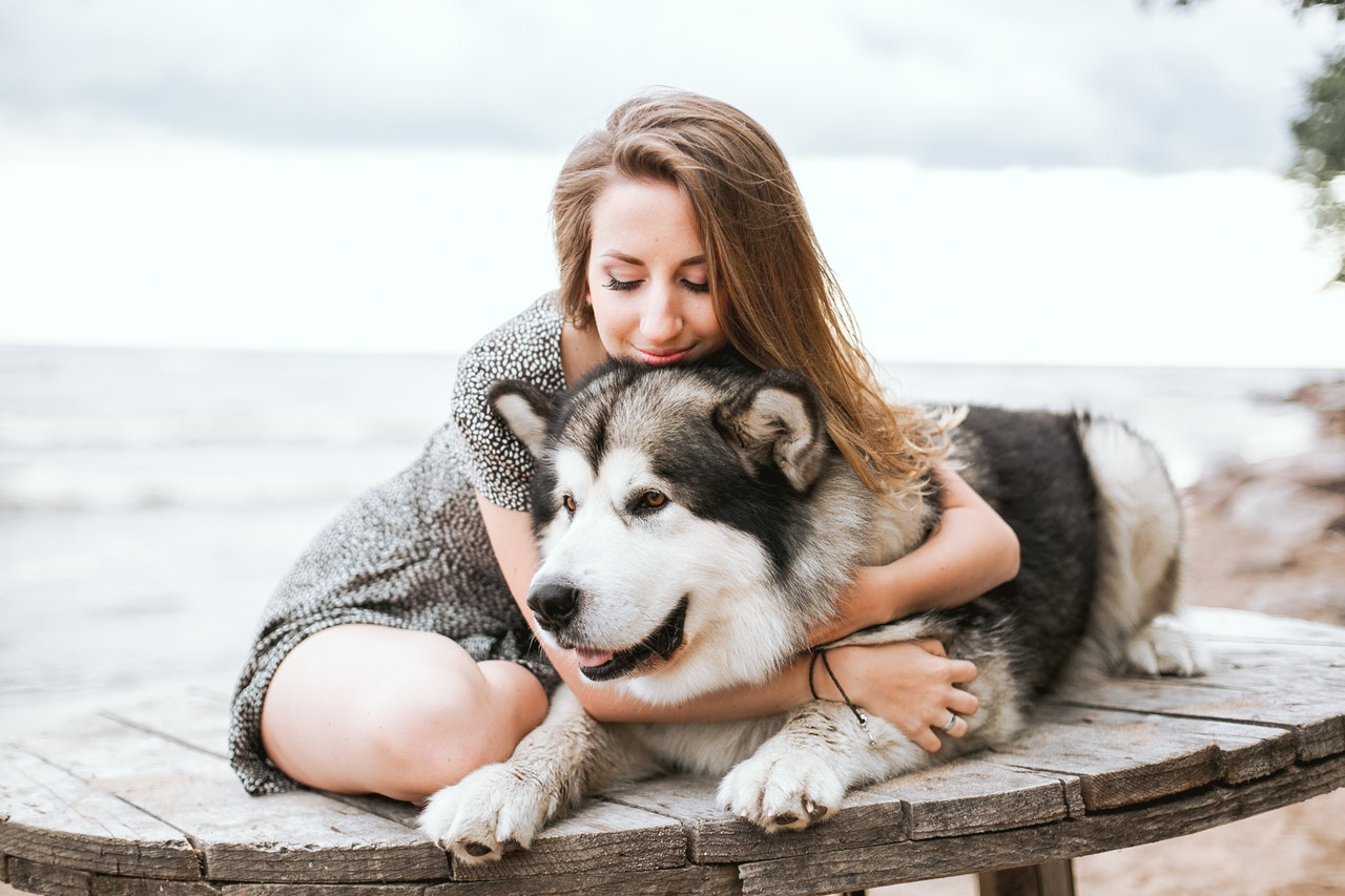 Selling With Dogs: Tips From A Pet Parent